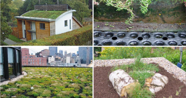 Green Roof Installations | Permaroof Kent