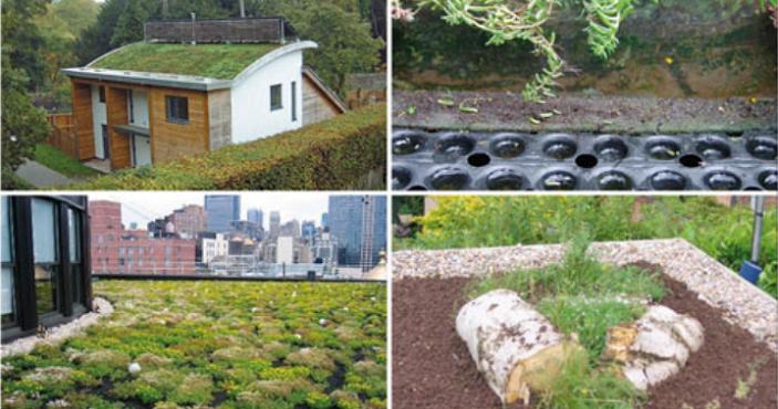 Green Roof Installations | Permaroof Kent